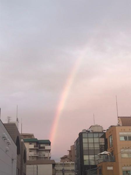雨上がりの虹❣️